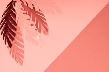 Top view of coral tropical paper cut palm leaves, minimalistic background with copy space stock vector
