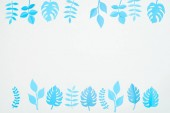 Nejlepší pohled na modrý papír řezané tropické listy izolované na bílém s prostorem pro kopírování