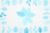 Fényképek felülnézetben kék papír vágott trópusi levelek elszigetelt fehér