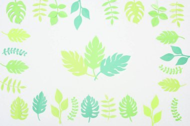 Top view of green paper cut tropical leaves isolated on white stock vector