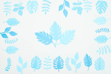 Top view of blue paper cut  leaves isolated on white stock vector