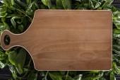 pohled na dřevěnou desku s horním výhledem na listy bazalky