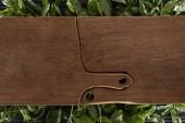 vista superiore di taglieri di legno sulle foglie di basilico