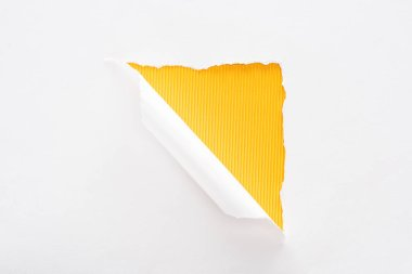 white torn and rolled paper on colorful yellow striped background