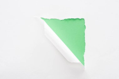 white torn and rolled paper on bright green background