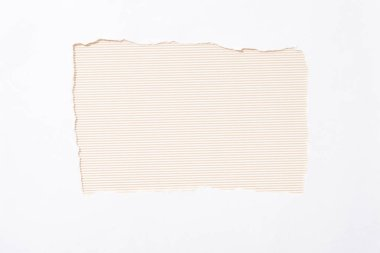 Beige striped colorful background in white torn paper hole stock vector