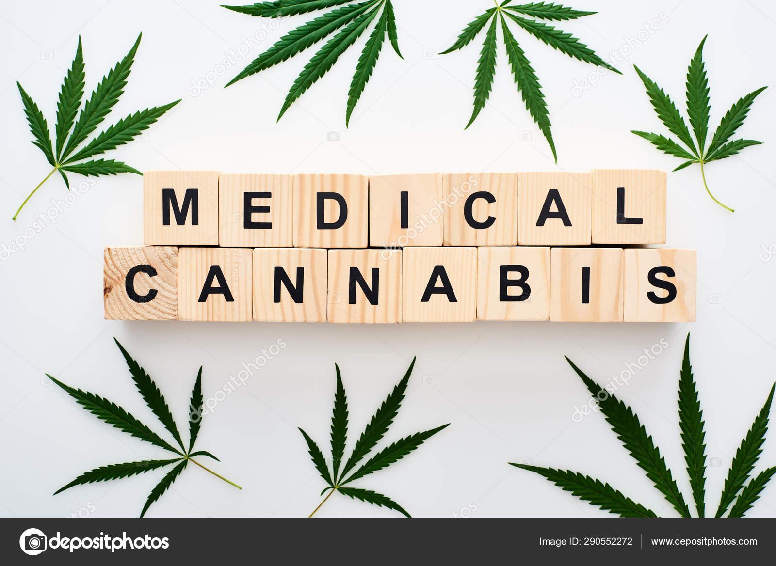 Конопля с трехпалыми листьями в кыргызстане легализуют марихуану
