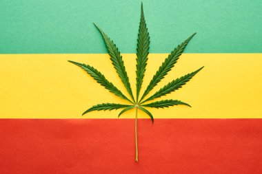 top view of cannabis leaf on Rastafarian flag background