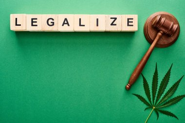 top view of green cannabis leaves and legalize lettering on wooden blocks near gavel on green background