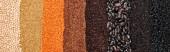 Fotografie Panoramaaufnahme schwarzer Bohnen, Reis, Quinoa, roter Linsen, Buchweizen und Kichererbsen