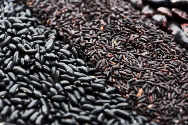 close up view of black rice and assorted beans