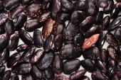 Fotografie Blick von oben auf ungekochte schwarze Bio-Bohnen