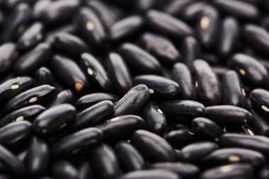 Close up view of uncooked small black beans stock vector