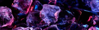 panoramic shot of clear ice cubes with purple colorful lighting isolated on black