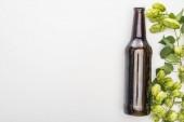 Draufsicht auf frisches Bier in Flasche mit grünem Hopfen auf weißem Hintergrund