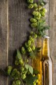 Fotografie Nejlepší pohled na pivo v láhvi se zeleným chmelovým stolem