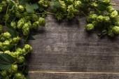 Draufsicht auf grünen blühenden Hopfen auf rustikalem Holztisch mit Kopierraum