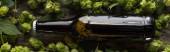 felülnézet a friss sör barna palackban zöld hop fa háttér, panoráma lövés