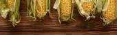 panoramatický záběr čerstvé kukuřice na hnědou dřevěnou plochu s prostorem pro kopírování