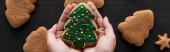 kivágott kilátás nő gazdaság karácsonyfa süti a kezében, panoráma lövés