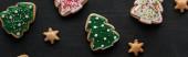 finom mázas karácsonyi cookie-k fekete háttér, panoráma lövés