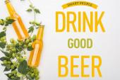 Draufsicht auf Bier in Flaschen mit grünem Hopfen auf weißem Hintergrund mit klugen Leuten, die gutes Bier trinken Illustration