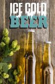 Draufsicht auf frisches Bier in Flaschen mit grünem Hopfen auf Holzfläche mit eiskaltem Bier-Schriftzug