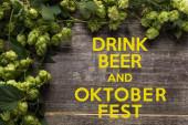 Draufsicht auf grünen blühenden Hopfen auf Holztisch mit Bier und Oktoberfest-Schriftzug
