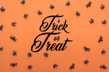 Top view of scary spiders on orange background with trick or treat illustration stock vector