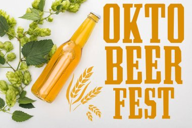 Top view of beer in bottle with green blooming hop on white background with Oktoberfest lettering stock vector