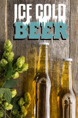 top view of fresh beer in bottles with green hop on wooden surface with ice cold beer lettering