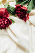 Fotografie top view of bouquet of red peonies on white cloth
