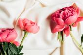 Ansicht von rosa schönen Pfingstrosen auf weißem Tuch