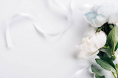 top view of blue and white peonies with ribbon on white background