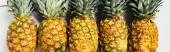 plochý ležel s čerstvými zralými ananas se zelenými listy na bílém pozadí, panoramatický výstřel