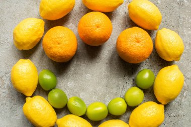 Top view of colorful oranges, avocado, limes and lemons arranged in circle on grey concrete surface stock vector