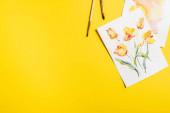 pohled shora na štětce v blízkosti obrazů s kreslenými květy na žluté