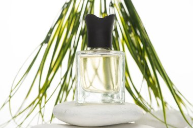 Selective focus of home perfume in bottle on spa stone on white background stock vector