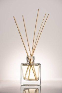 Wooden sticks in perfume in bottle on beige background stock vector