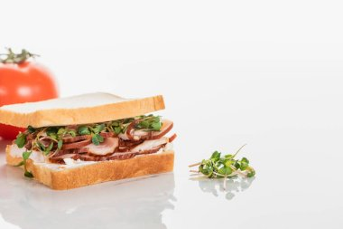 Selective focus of fresh delicious sandwich with meat and sprouts near tomato on white surface stock vector