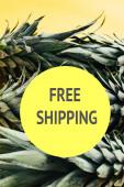 zelené ananasové listy izolované na žlutém pozadí s bezplatnou expedice ilustrace