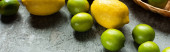 ripe yellow lemons and green limes on concrete textured surface, panoramic crop