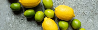Top view of ripe yellow lemons and green limes on concrete textured surface, panoramic crop stock vector