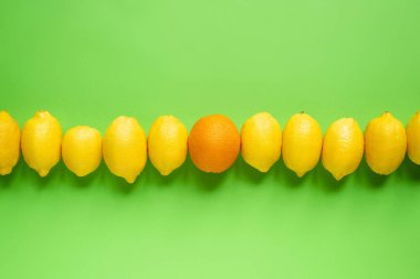Top view of ripe yellow lemons and orange  in line on green background stock vector