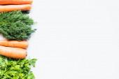 Rand aus bunten frischen Karotten und Grüntönen auf weißem Hintergrund