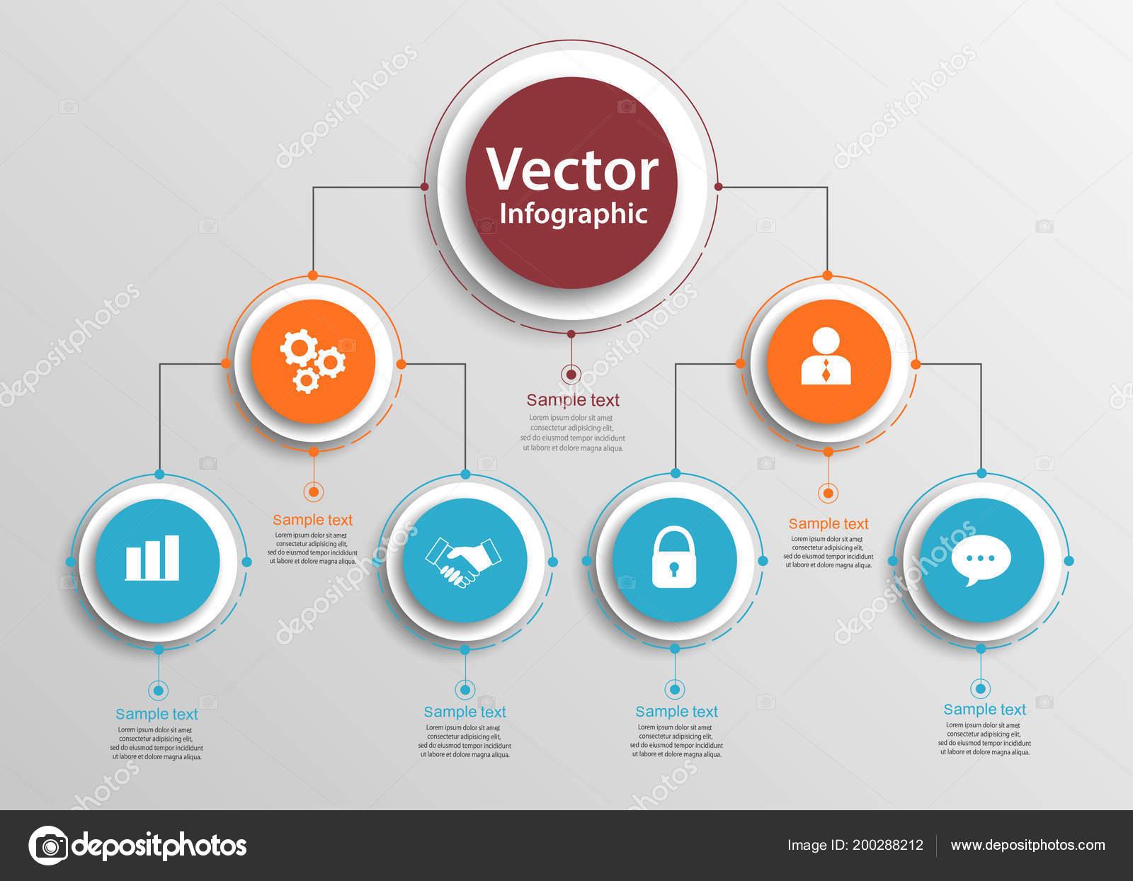 Jerarquía Negocio Organigrama Gráfico Infografía Elementos