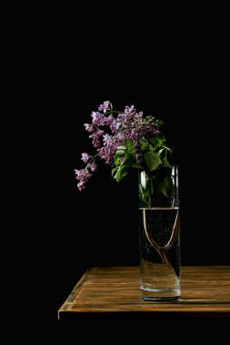 close-up shot of branch of lilac flowers in vase on wooden table isolated on black