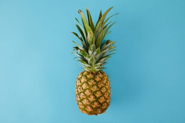 top view of ripe exotic pineapple fruit isolated on blue