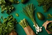 Draufsicht der verschiedenen Reifen Gemüse auf Grünfläche