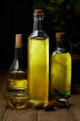 bottles of various olive oil on wooden tabletop